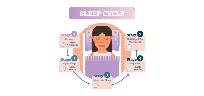 5 Stages of Sleeping Cycle